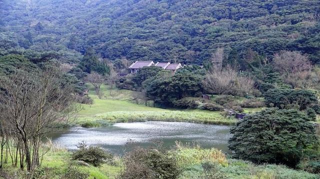 DSC07259.JPG - 大屯自然公園