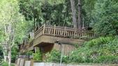 八仙山國家森林遊樂區:DSC00165.JPG