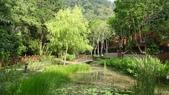 八仙山國家森林遊樂區:DSC00182.JPG