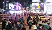 2018台北燈節:DSC08468.JPG