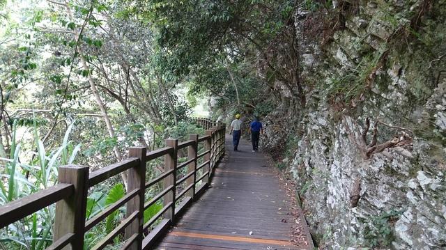 DSC00049 - 複製.JPG - 八仙山國家森林遊樂區天籟步道