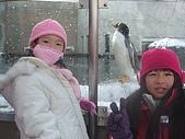 98年北海道之旅:CIMG5032.JPG
