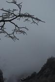 201202黃山五日:DSC_0840.JPG