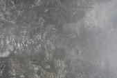 201202黃山五日:DSC_0834.JPG