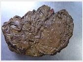 龜甲山林:最近更新10.jpg