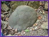 龜甲山林:龜甲石6.jpg