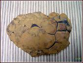 龜甲山林:黃龜甲石