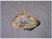 龜甲山林:雅石6.jpg