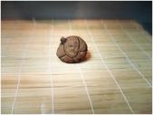 龜甲山林:DSC00276
