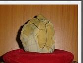 龜甲山林:雅石1.jpg