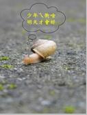 見仁見智:05.jpg