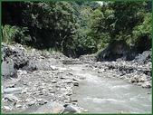 龜甲山林:眉溪黑膽