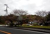 180321_須崎-窪川:2018-0321-075140.jpg