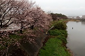 180321_須崎-窪川:2018-0321-064409.jpg