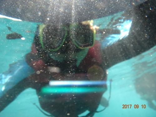 海底的世界很不一樣 - [屏東小琉球] 難忘的世界級浮淺點