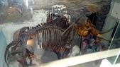 樹谷生活科學館園區:DSC07395台南科學園區~樹谷生活科學館~恐龍展館.JPG