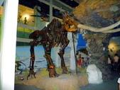 樹谷生活科學館園區:P1070096台南科學園區~樹谷生活科學館~恐龍展館.JPG