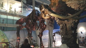 樹谷生活科學館園區:DSC07405台南科學園區~樹谷生活科學館~恐龍展館.JPG