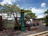 樹谷園區內~風之谷公園:P1070132樹谷園區~風之谷公園~入口.JPG