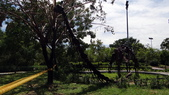 樹谷生活科學館園區:DSC07406台南科學園區~樹谷生活科學館~外庭園區.JPG