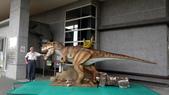 樹谷生活科學館園區:DSC07391台南科學園區~樹谷生活科學館~恐龍.JPG