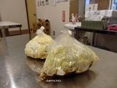 栃木 歷木縣:日光醃菜DIY (9).JPG