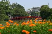 越南河內:DSC_1381_resize.JPG