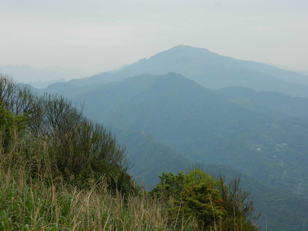 大小粗坑山腰路:大小粗坑山腰路18.JPG