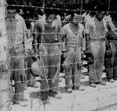 日本投降台灣光復:宣布投降Japanese POWs at Guam bowed their heads after hearing Emperor Showa's surrender announcement, 15 Aug 1945.jpg