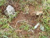 大小粗坑山腰路:印象中基點處發現的垃圾.JPG