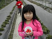 採草莓:DSCN9596.JPG