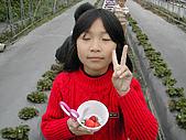 採草莓:DSCN9597.JPG