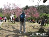 2011陽明山花季:1481334706.jpg