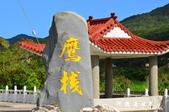 滿州花海-大冠鷲:1693316077.jpg