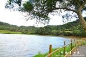 東源濕地-哭泣湖:1356069165.jpg