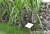 台北市客家文化主題公園:1669915123.jpg