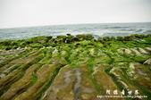 2013老梅綠色石槽:1549691890.jpg