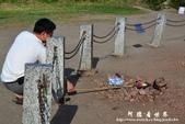 滿州花海-大冠鷲:1693316070.jpg