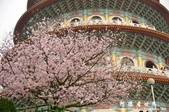 2013天元宮:1831719183.jpg