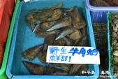 和平島-碧砂漁港:1532264141.jpg