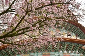 2013天元宮:1831719163.jpg