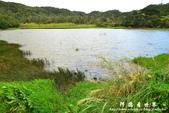 東源濕地-哭泣湖:1356069163.jpg