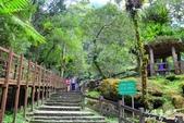 內洞森林遊樂區:1569219316.jpg