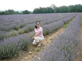 法國-暜羅旺斯provence:1069483839.jpg