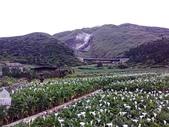 北台灣:1246772927.jpg