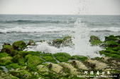2013老梅綠色石槽:1549691892.jpg