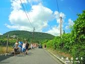 Badacsony葡萄園:1576022081.jpg