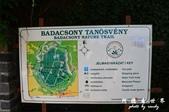 Badacsony葡萄園:1576022067.jpg