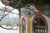2013天元宮:1831719134.jpg