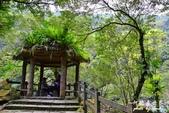 內洞森林遊樂區:1569219319.jpg